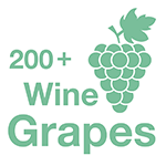 The 200+ Wine Grapes App Retina Logo