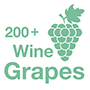 The 200+ Wine Grapes App Logo