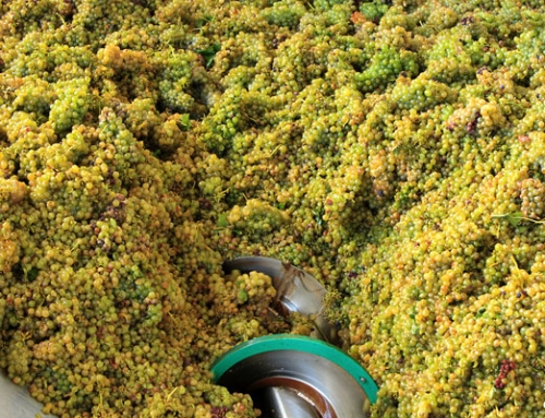 News on 2017's Harvest – Mostly Discouraging News With Burgundy as a Pleasing Exception
